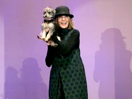 Diane Keaton Asks Tonight Show Audience to Adopt Dog: Video