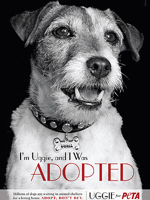 Uggie from The Artist Will Publish a Memoir