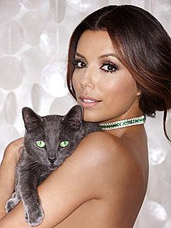 Eva Longoria Cozies Up to a Cat for New Ad Campaign | Eva Longoria