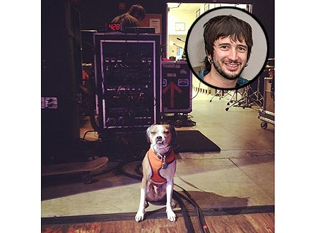 The All-American Rejects' Fifth Member Is Guitarist Nick Wheeler's Dog