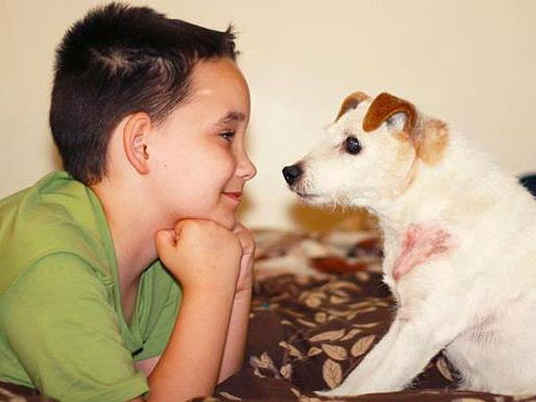 Boy Starts 'Lick It List' for Dying Service Dog