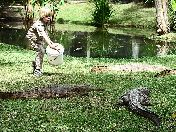 Steve Irwin's 8-Year-Old Son Follows in Dad's Footsteps
