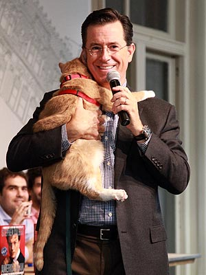 Stephen Colbert Hugs a Cat at Book Signing