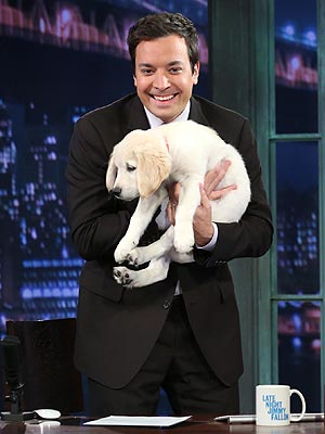 Jimmy Fallon's Puppy on Late Night