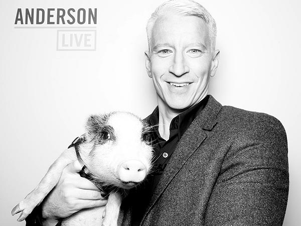 Anderson Cooper Meets Glitzy the Pig on Anderson Live