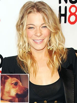 LeAnn Rimes Rescues Puppy Abandoned in Traffic