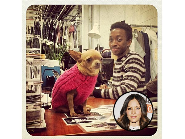 Katharine McPhee's Chihuahua Is Now Working in the Smash Costume Department