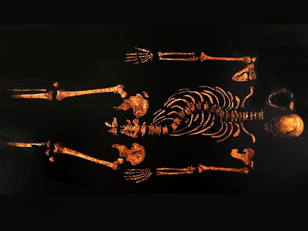 Richard III's Remains Confirmed After Being Found Under a Parking Lot