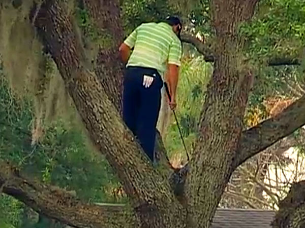 Video: Sergio Garcia Climbs Tree to Recover Golf Ball