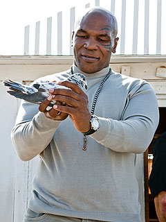 Mike Tyson: Ex-Girlfriend Cooked and Ate My Pigeon | Mike Tyson