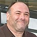 James Gandolfini's Teen Son Called for Help from Hotel Room: Report | James Gandolfini