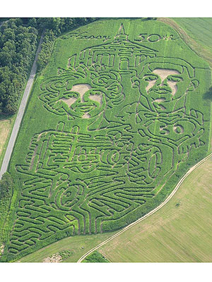 Man Creates Corn Maze of Wedding Photo for Wife on 50th Anniversary