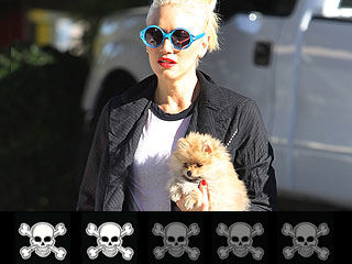 Bad to the Bone: Ranking Rock Stars & Their Dogs | Gwen Stefani