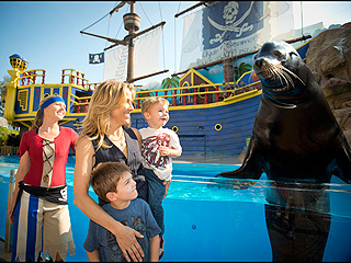 Sheryl Crow and Sons Meet Sea Lion | Sheryl Crow