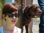 Stars and Their Pets: Anne Hathaway's Coffee Mate | Adam Shulman, Anne Hathaway