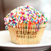 Cupcakes From Out-of-Business Crumbs Bake Shop Are Selling for How Much?!