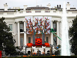 Make the Halloween Cookies the Obamas Gave to Trick-or-Treaters