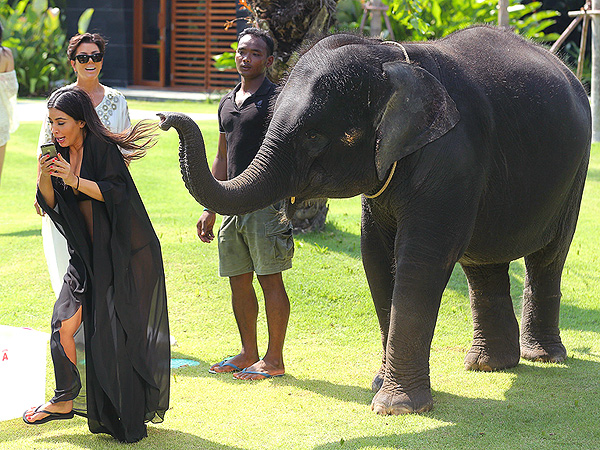 Kim Kardashian Panics When Baby Elephant Gets Too Close