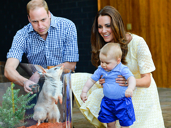 Prince George in Australia and New Zealand: What We Learned