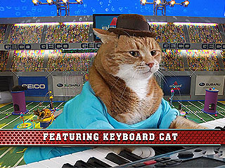 Keyboard Cat, Lil Bub to Appear on Puppy Bowl