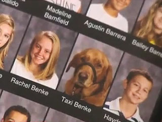 The Daily Treat: 7th Grader's Service Dog Gets Picture in School Yearbook