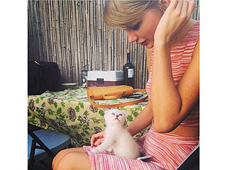 Taylor Swift's New Feline Friend Is Named for a TV Detective | Taylor Swift