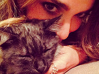 Nikki Reed Adopts Another Pet: a Kitty!