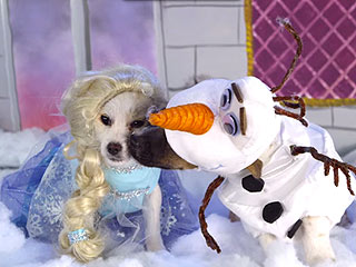 VIDEO: Puppies in Slow-Mo Act Out Your Favorite Disney Moments
