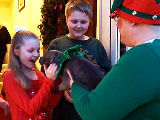 Santa's Elves Are Delivering Puppies to Children for Christmas This Year (VIDEO)