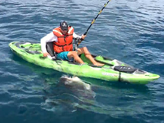He's Gonna Need a Bigger Boat! Giant Shark Pulls Florida Fisherman out of His Kayak