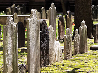 The Last Two Graves in Manhattan Are $350K Each