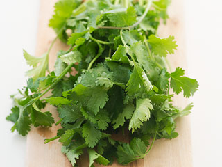 Some Mexican Cilantro Banned, Blamed for Parasite Outbreak (Video)