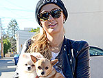 Stars and Their Pets | Paris Hilton