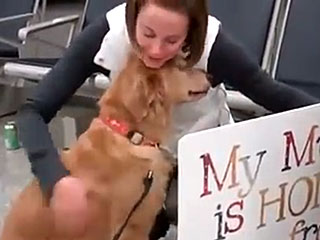 Pup Surprises Soldier Mom at Airport and They Can't Stop Crying Tears of Joy
