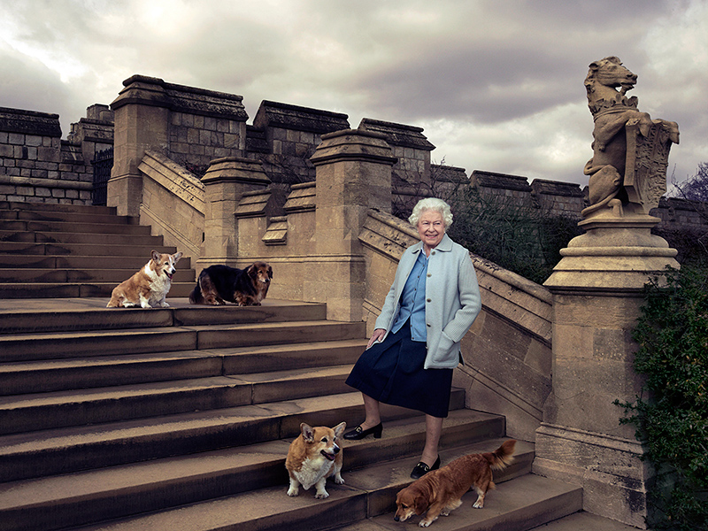 Amazing Photo of Queen Elizabeth and Her Corgis