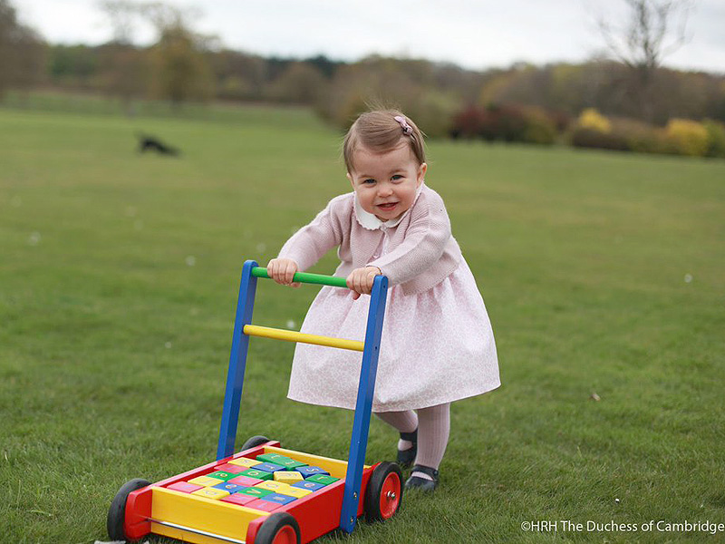 Where To Buy Princess Charlotte's First Birthday Portrait Ensembles