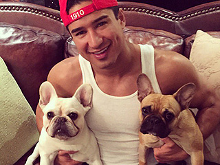 #NationalDogDay: See the Celebrity Love Notes to Their Fur Babies