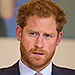 Prince Harry to the Rescue! Former Pilot Flies in Helicopter to Help Save Elephants in Africa