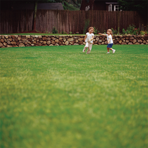 2 little girls playing on a lawn