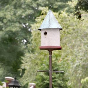 birdhouse sitting high above a yard