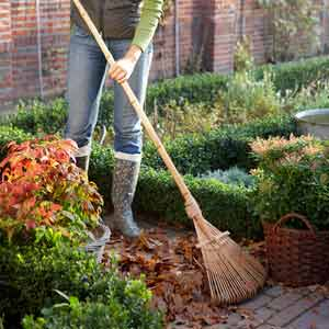 woman clearing leaves with rake in patio area