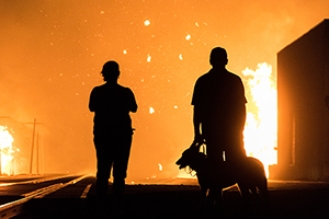 silhouette of man, woman, and dog watching fire in the distance