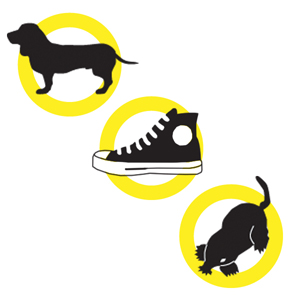 dog, sneaker and mole icons inside hollow yellow circles