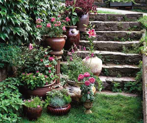 container pots lined along steps of stone stairway in garden