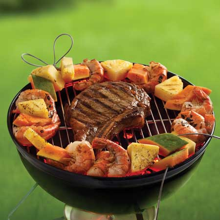 firewire flexible barbecue skewers