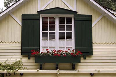 Window box with exterior paint