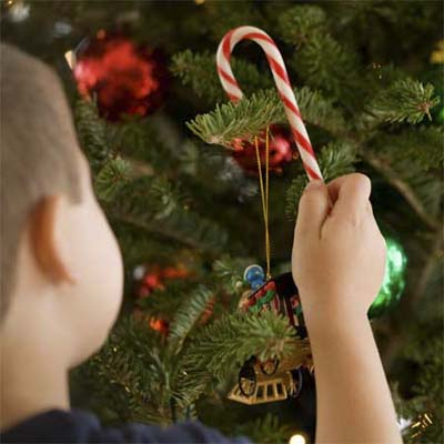 child taking a candy cane off a decorated tree