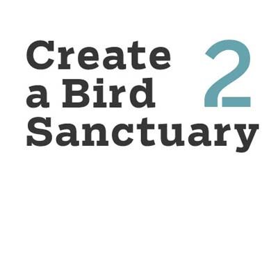 create a bird sanctuary