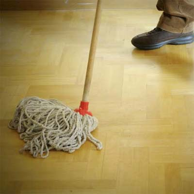push mop resting on a wood floor