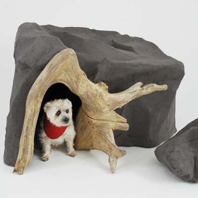 dog inside a dog cave
